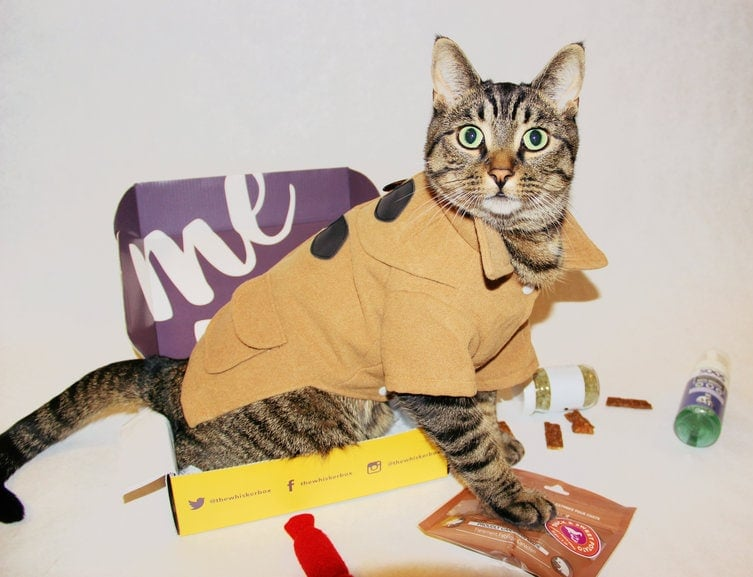 WhiskerBox Cat Subscription Box